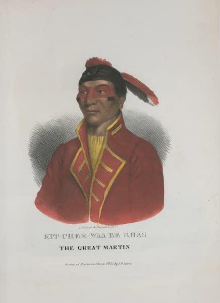 The Aboriginal Port Folio - Kit-chee-waa-be Shas, the Great Martin (1836)