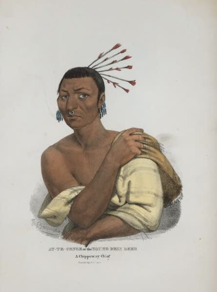 The Aboriginal Port Folio - At-te-conse or the Young Rein Deer, a Chippeway Chief (1836)