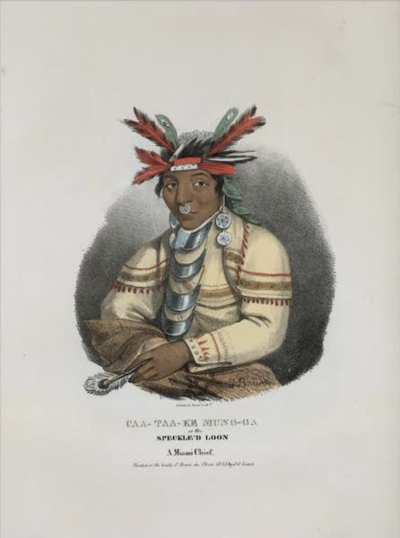 The Aboriginal Port Folio - Caa-taa-ke Mung-ga or the Speckled Loon, a Miami Chief (1836)