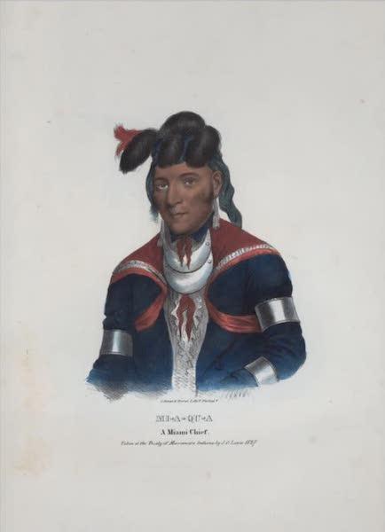 The Aboriginal Port Folio - Mi-a-qu-a, a Miami Chief (1836)