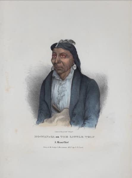The Aboriginal Port Folio - Mo-wan-za or the Little Wolf, a Miami Chief (1836)