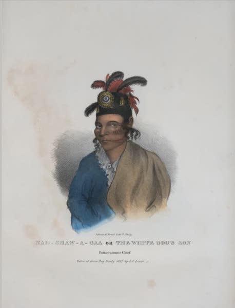 The Aboriginal Port Folio - Nan-shaw-a-gaa or the White Dog's Son, Pottawatomie Chief (1836)