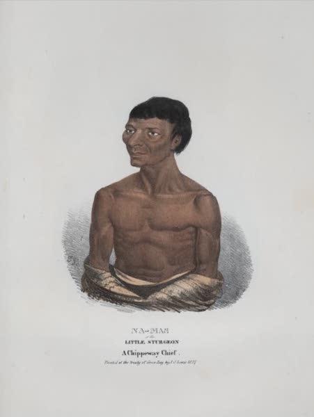 The Aboriginal Port Folio - Na-mas or the Little Sturgeon, a Chippeway Chief (1836)