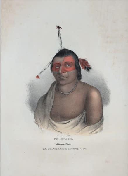 The Aboriginal Port Folio - Pe-a-jick, a Chippewa Chief (1836)