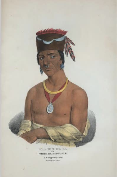 The Aboriginal Port Folio - Waa-bin-de-ba or the White Headed Eagle, a Chippeway Chief (1836)