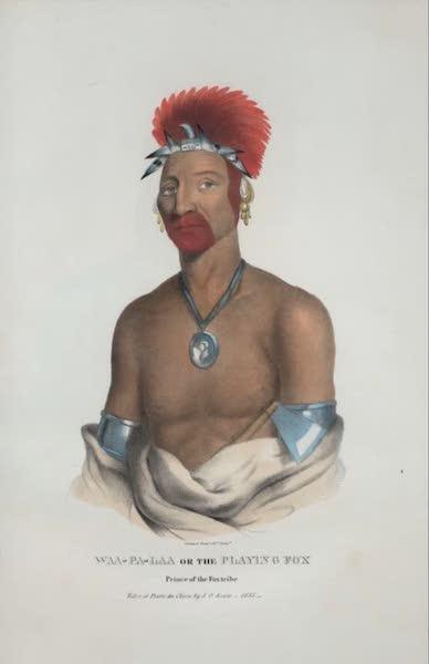 The Aboriginal Port Folio - Waa-pa-laa or the Playing Fox, Prince of the Fox tribe (1836)