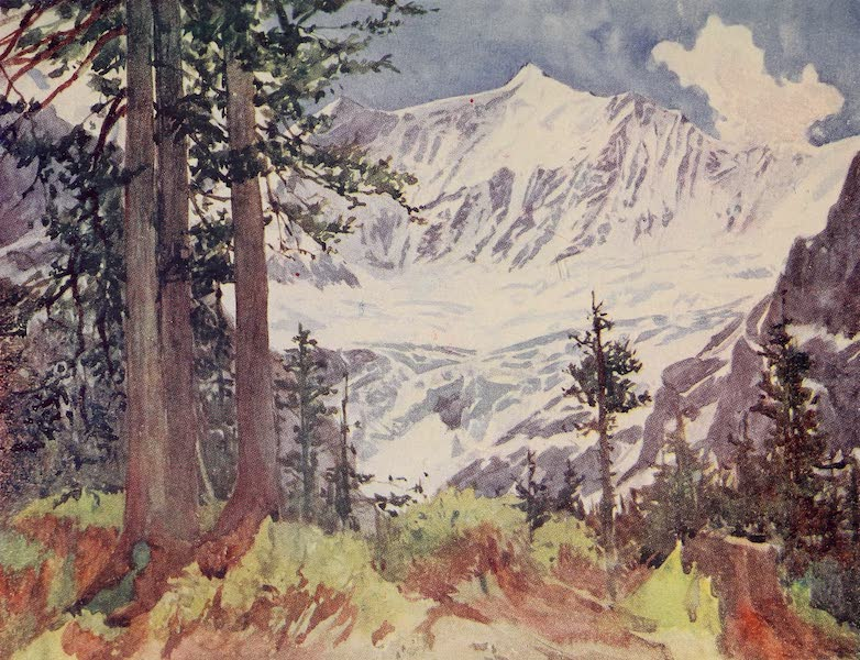 The Alps, Painted and Described - Fiescherhorn and Lower Grindelwald Glacier (1904)