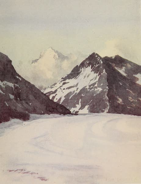 The Alps, Painted and Described - Looking down the Aletsch Glacier from Concordia Hut (1904)