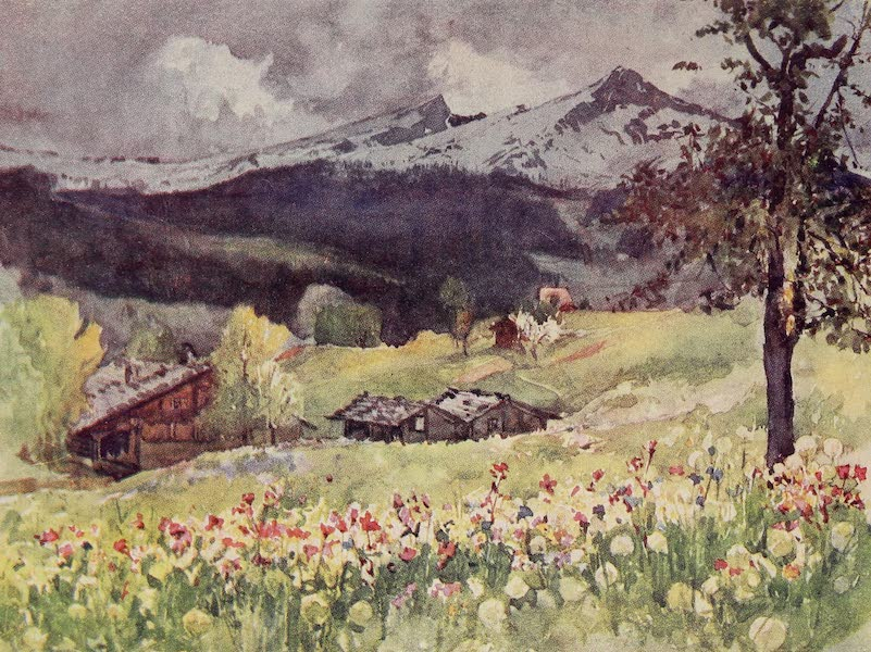 The Alps, Painted and Described - Grindelwald looking towards the Wengen Alp (1904)