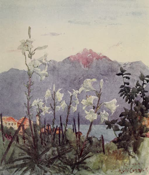 The Alps, Painted and Described - In a Garden at Locarno (1904)