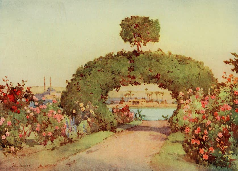 The Banks of the Nile - A Rose-Garden at Giza, and View of Cairo (1913)