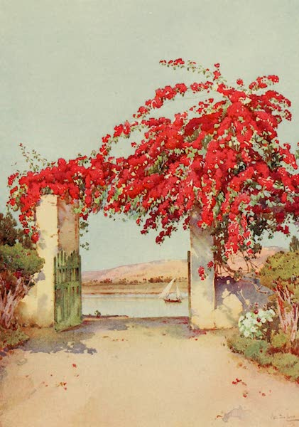 The Banks of the Nile - A Garden in Luxor (1913)