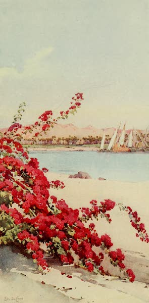 The Banks of the Nile - Mountains to the North of Assuan from a Garden on Elephantine Island (1913)