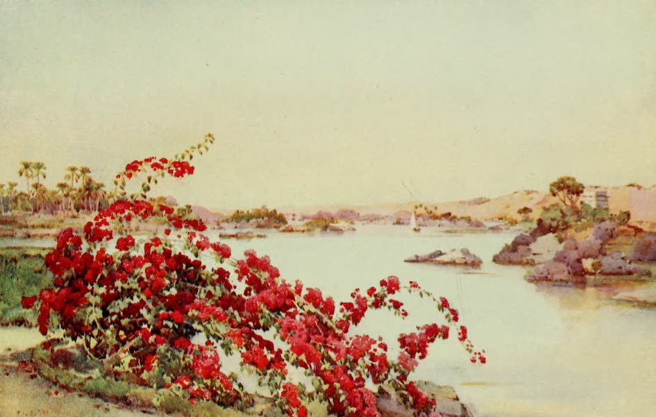 The Banks of the Nile - View from the Sirdar's Island, Assuan (1913)