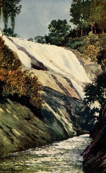 The Beautiful Rio de Janiero - A Cascade at Tijuca (1914)