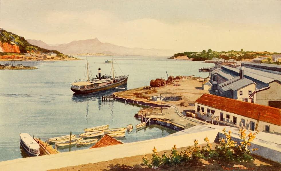 The Beautiful Rio de Janiero - Workshops of the Lloyd Brasileiro Steamship Company (1914)