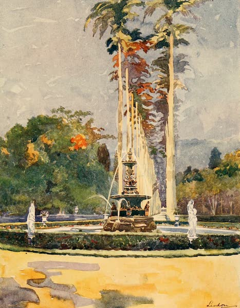 The Beautiful Rio de Janiero - Avenue of Royal Palms, Botanical Gardens (1914)