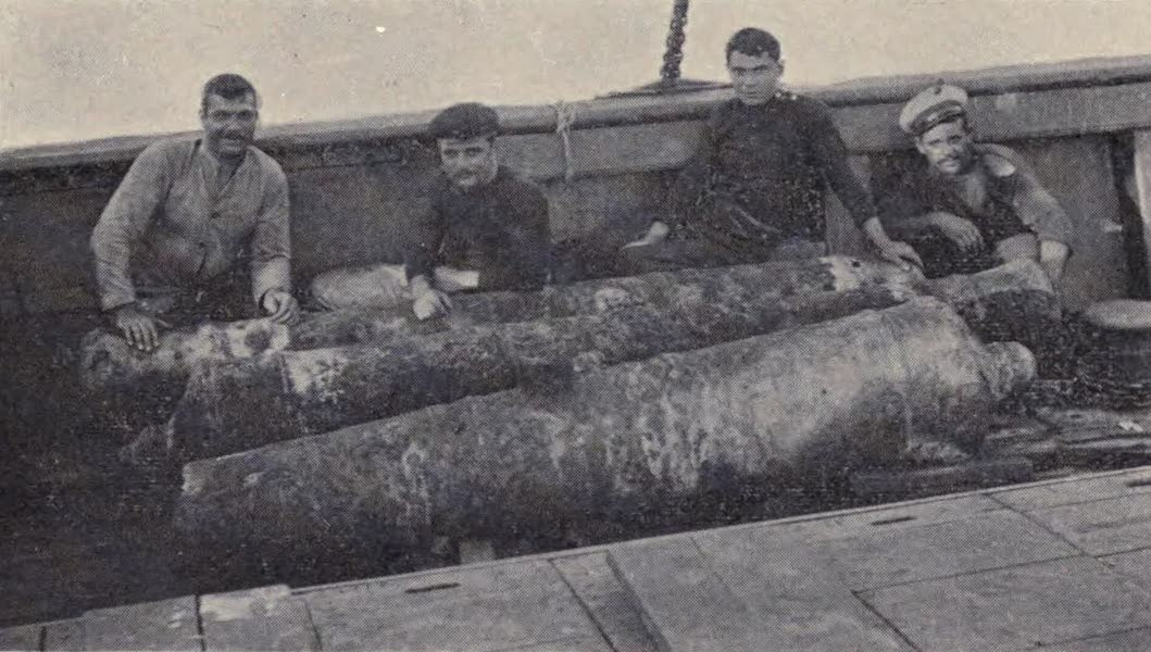 The Book of Buried Treasure - Cannon of the treasure galleons recovered by Pino from the bottom of Vigo Bay (1911)