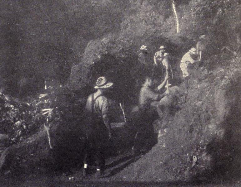 The Book of Buried Treasure - Treasure-seekers digging on Cocos Island (1911)