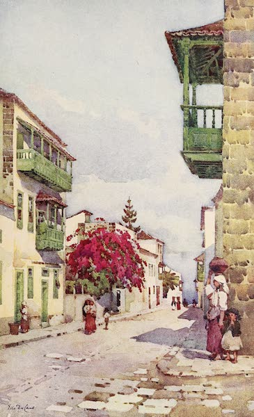 The Canary Islands, Painted and Described - A Street in Puerto Orotava (1911)