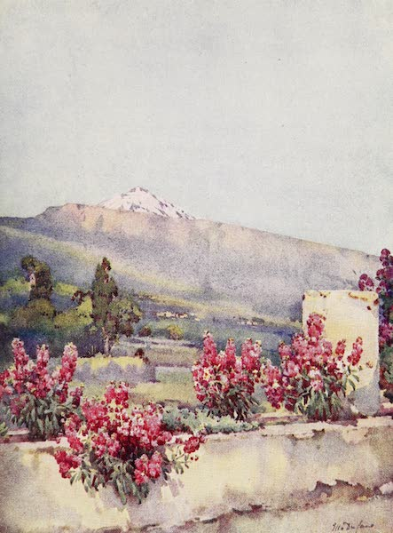 The Canary Islands, Painted and Described - The Peak, from Villa Orotava (1911)