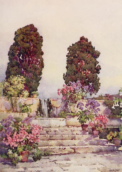The Canary Islands, Painted and Described - Botanical Gardens, Orotava (1911)