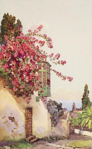 The Canary Islands, Painted and Described - El Sitio Del Pardo (1911)