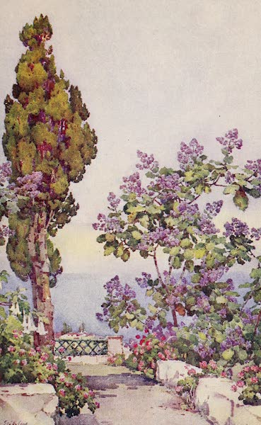The Canary Islands, Painted and Described - A Spanish Garden (1911)