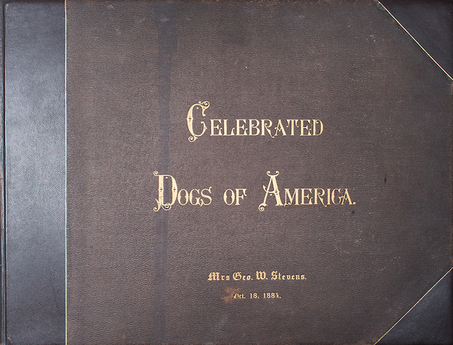 Hunting - The Celebrated Dogs of America