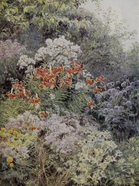 The Charm of Gardens - A Kentish Garden in Autumn (1910)