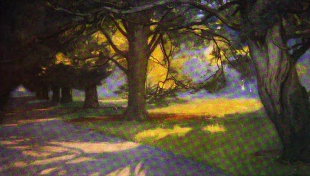 The Clyde River and Firth Painted and Described - The Yew Avenue, Rosneath (1907)