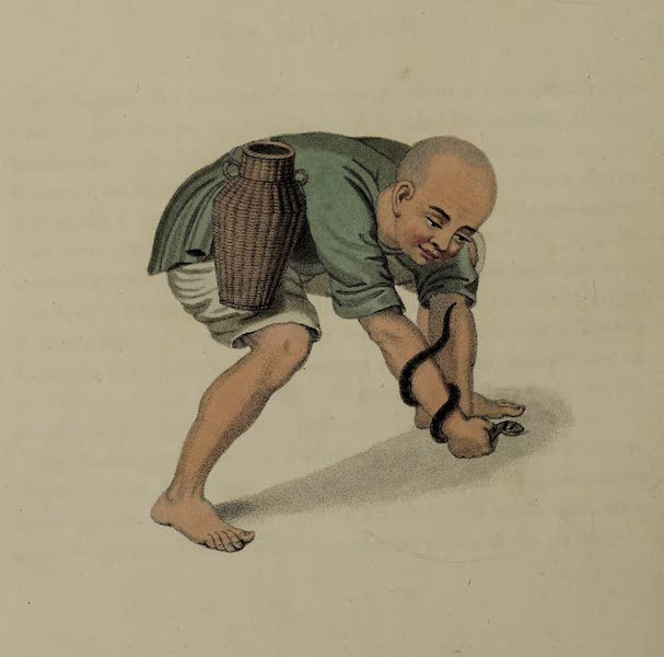 The Costume of China - A Serpent-catcher (1800)