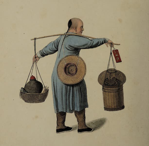 The Costume of China - A Viper-seller (1800)