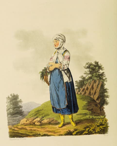 The Costume of the Hereditary States of the House of Austria - A Schlavonian Country Girl, of the County of Neutra (1804)
