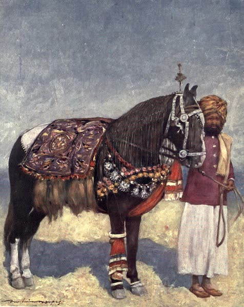 The Durbar - A Horse fromm Jodhpur (1903)