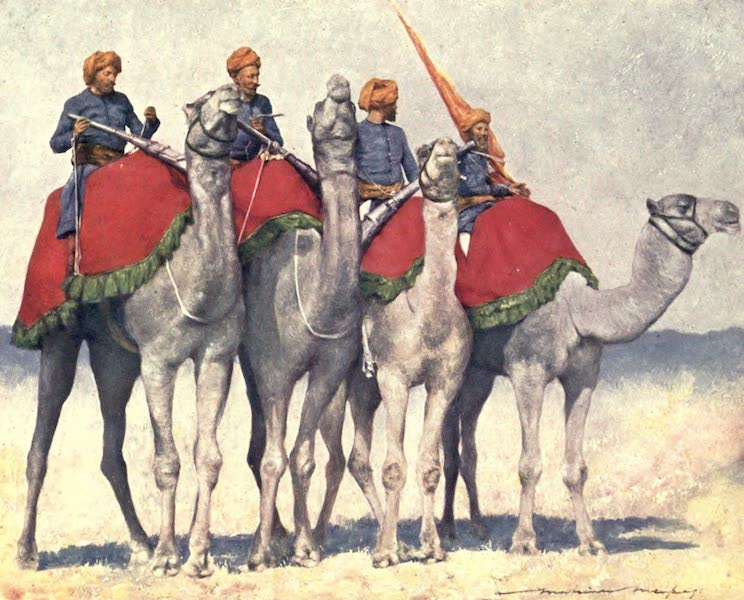 The Durbar - Camelry from Alwar (1903)