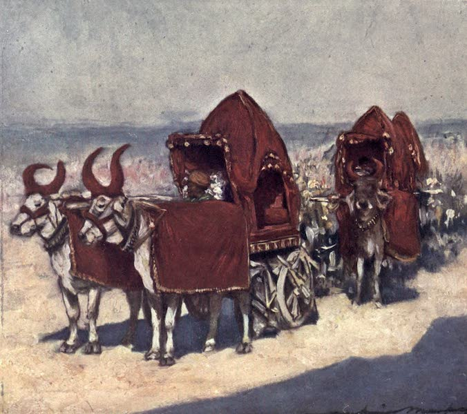 The Durbar - Some Native Vehicles (1903)