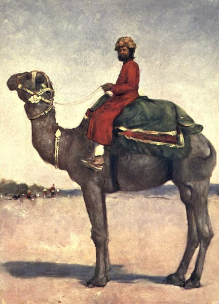 The Durbar - A Camel Rider from Kota (1903)