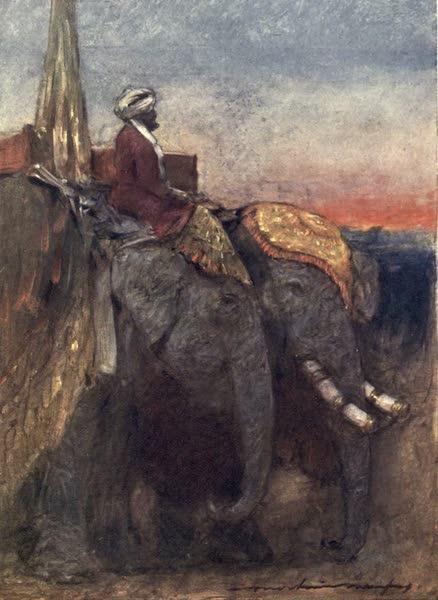 The Durbar - Jaipur Elephants (1903)