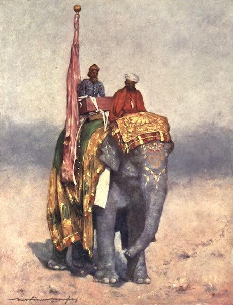 The Durbar - An Elephant from the Sandy Wastes of Rajputana (1903)