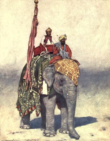 The Durbar - An Elephant from Jaipur (1903)