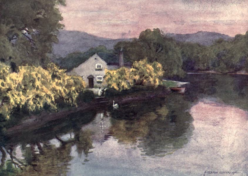 The English Lakes Painted and Described - Old Laburnums at Newby Bridge, Windermere (1908)