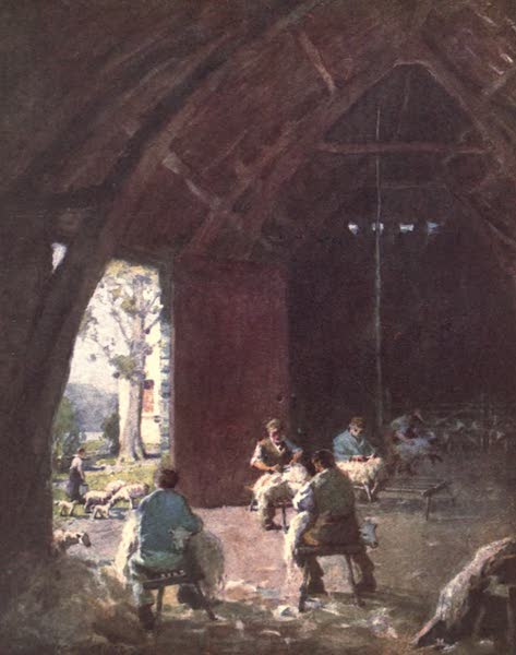 The English Lakes Painted and Described - Sheep-Shearing, Esthwaite Hall Farm (1908)