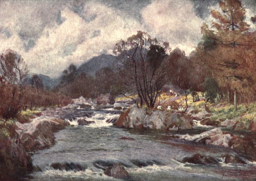 The English Lakes Painted and Described - Daffodils by the Banks of the Silvery Duddon (1908)