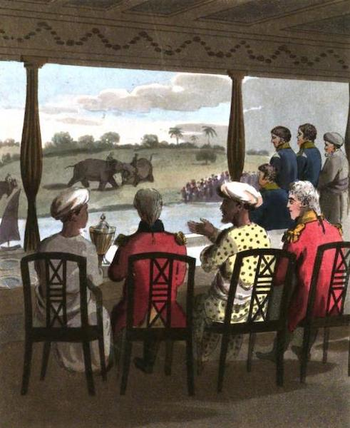 The European in India - Marquis Wellesley and his Suite, at the Nabob of Oude's Breakfast Table, viewing an Elephant-Fight (1813)
