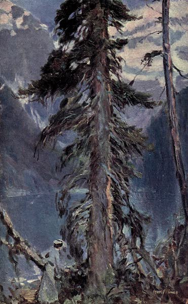 The Fair Dominion - A Sentinel of the Rockies (1911)