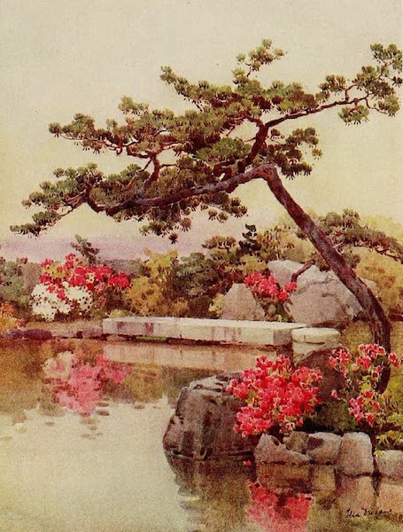 The Flowers and Gardens of Japan - Azaleas in a Kyoto Garden (1908)