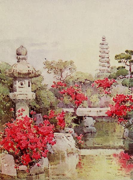The Flowers and Gardens of Japan - Azaleas, Kyoto (1908)
