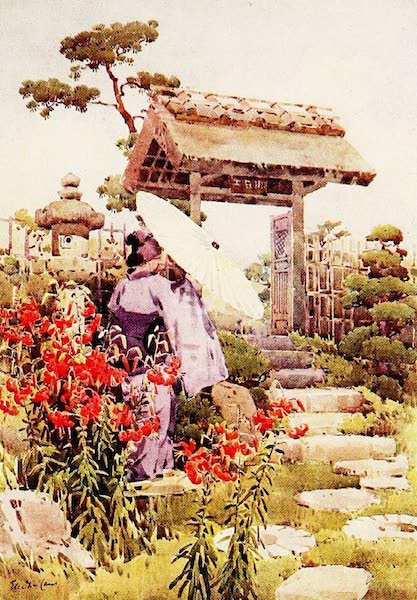 The Flowers and Gardens of Japan - Tiger Lilies (1908)