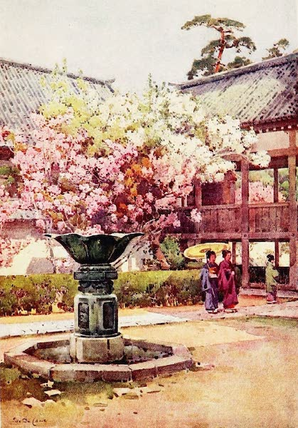 The Flowers and Gardens of Japan - Cherry Blossom, Chion-in Temple (1908)